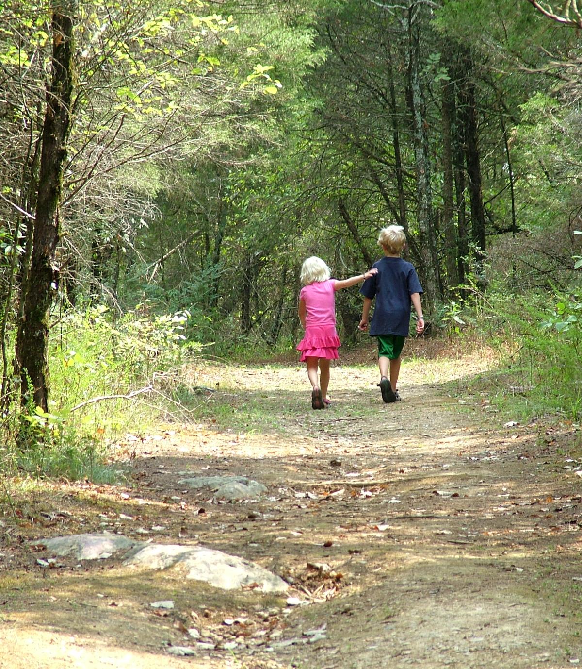 С сестрой в лесу 3 фотография