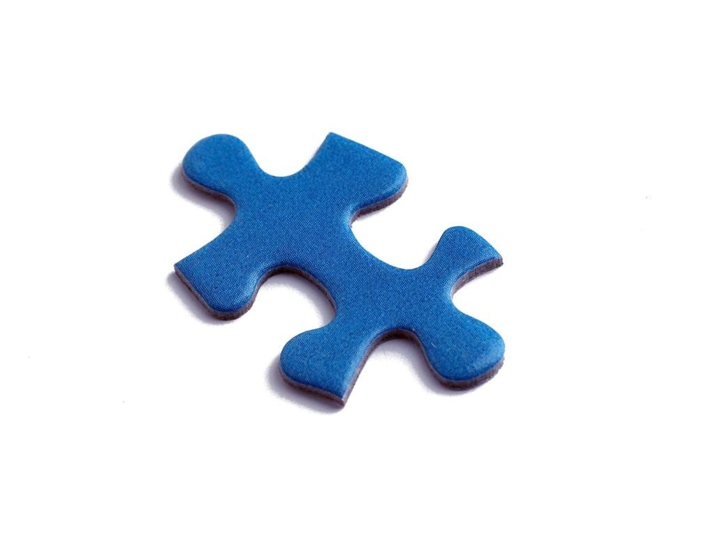 autism_puzzle piece