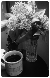 coffee lilacs