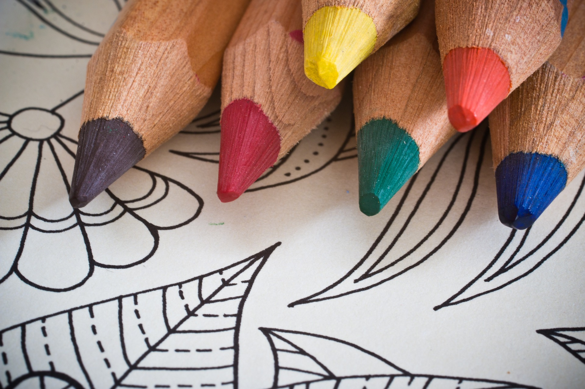 coloring-